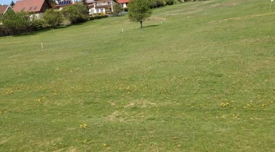 Budai Golf Club