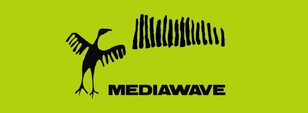 mediwave_fejlec