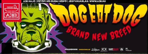 dogeatdog_koncert_ fejlec