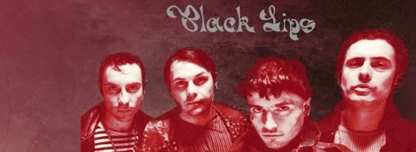the_black_lips_koncert_2017_fejlec