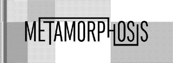 metamorphosis_2017_fejlec