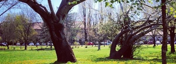 Halesz park