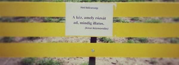 Wein János park